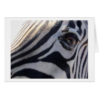 Cartão Olho da zebra