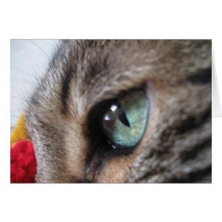 Cartão olho do tigre