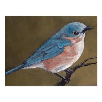 Cartão oriental da arte do pássaro do Bluebird
