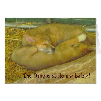 Cartão Os Dingos roubaram meu bebê!