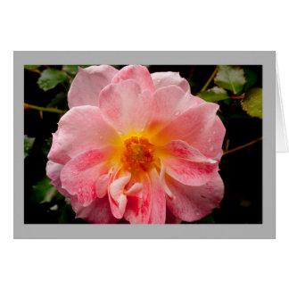 Cartão Os namorados 29 cor-de-rosa aumentaram com centro