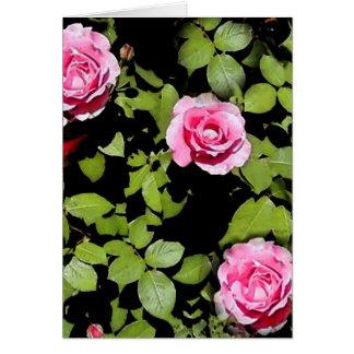 Cartão Os rosas de Momma, vazio