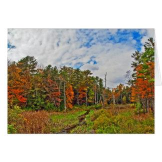Cartão Outono do nordeste