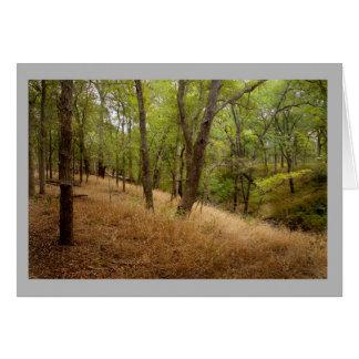 Cartão Paisagem floresta de 70 outonos com grama dourada