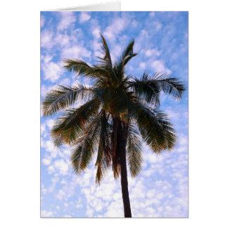 Cartão Palma de coco