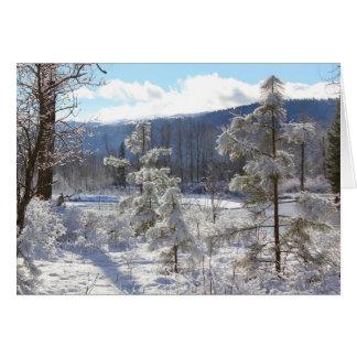 Cartão Parque estadual do bosque do Conselho
