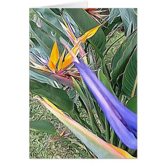 Cartão Pássaros de paraíso exóticos