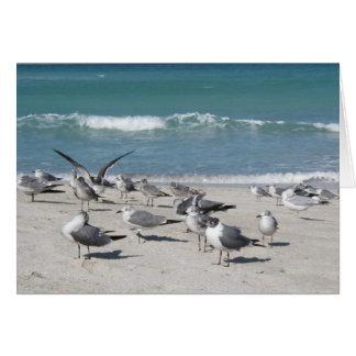 Cartão pássaros na praia do oceano