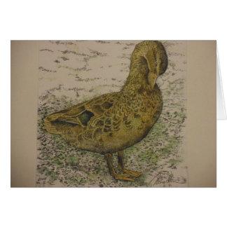 Cartão pato do pato selvagem