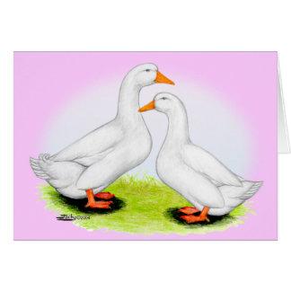 Cartão Pato:  Pekins branco