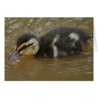Cartão Pato selvagem do bebê