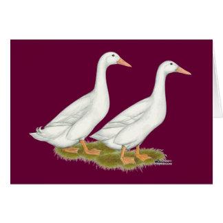 Cartão Patos brancos