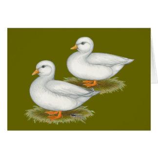 Cartão Patos:  Chamadas do branco