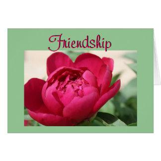 Cartão Peônia da amizade