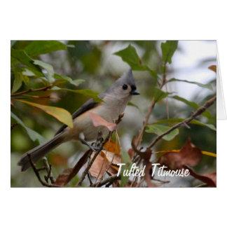 Cartão Personalize a foto adornada do pássaro do Titmouse