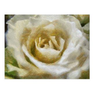 Cartão pintado do rosa branco cartão postal