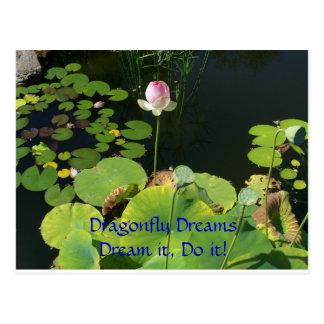 Cartão Postal A libélula sonha o sonho do ~ ele, fá-lo!