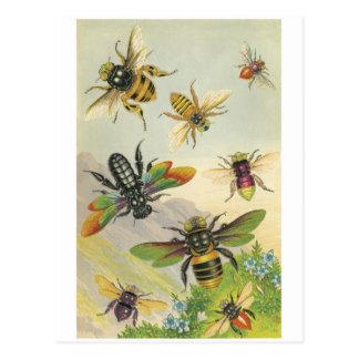 Cartão Postal Abelhas