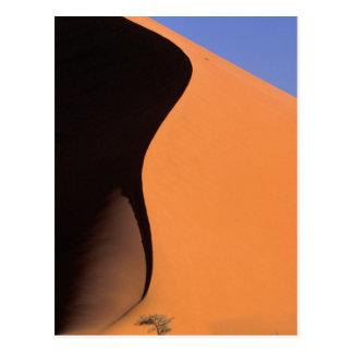 Cartão Postal África, Namíbia, nivelando a luz em dunas,