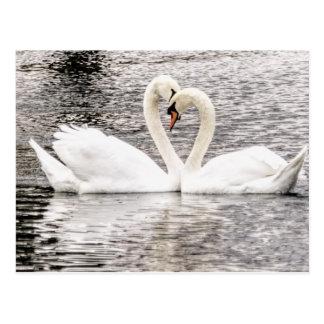 Cartão Postal Amor eterno