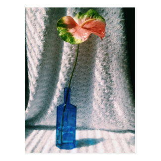 Cartão Postal antúrio e da garrafa vida azul ainda