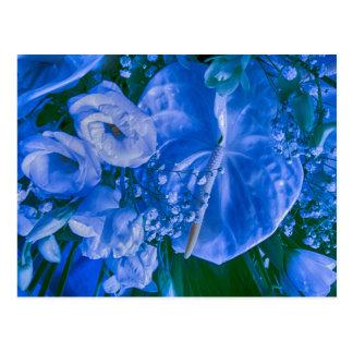 Cartão Postal antúrio e rosas