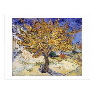 Cartão Postal Árvore de Mulberry de Vincent van Gogh |, 1889