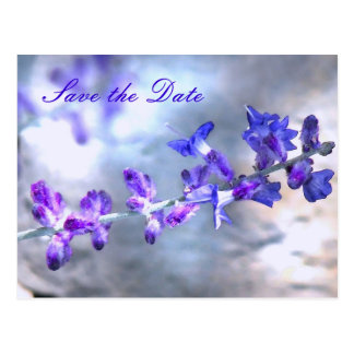 Cartão Postal As flores roxas salvar a data