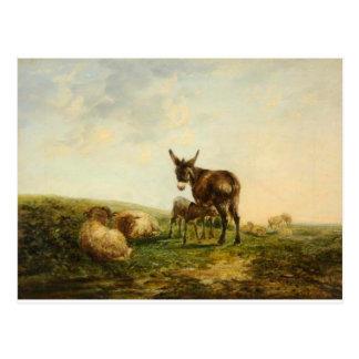 Cartão Postal Asno e carneiros por William Shayer