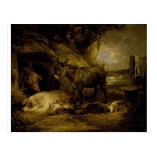 Cartão Postal Asno e porcos por George Morland