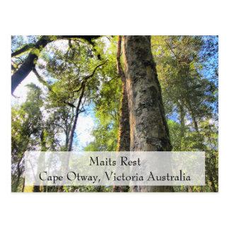 Cartão Postal AU de Otway Victoria do cabo da caminhada da