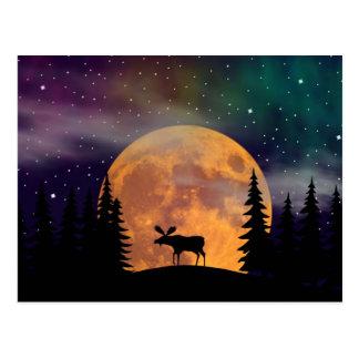 Cartão Postal Aurora boreal do norte das noites