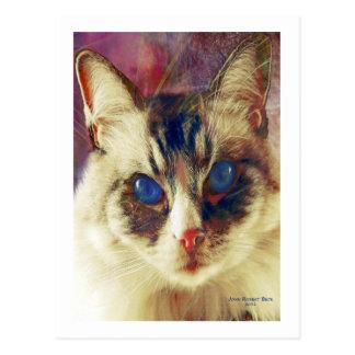 Cartão Postal Azuis de cobalto