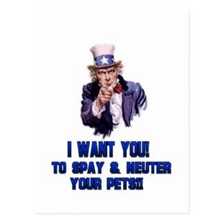 Cartão Postal azul do tio Sam