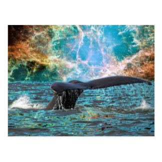 Cartão Postal Baleia de Humpback e Supernova