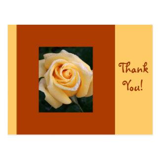 Cartão Postal Beleza do rosa amarelo