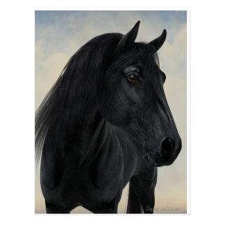 Cartão Postal Beleza preta - retrato preto do cavalo do frisão