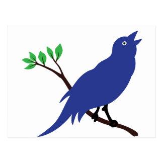 Cartão Postal Bluebird do canto
