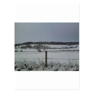 Cartão Postal Campo nevado