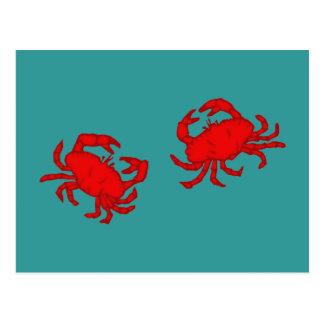 Cartão Postal Cancros crabs