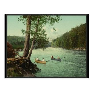 Cartão Postal Canoeing em um córrego da montanha de Adirondack