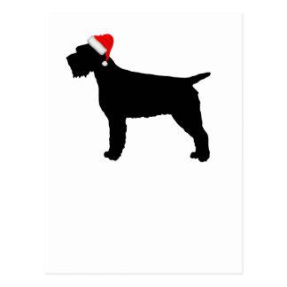 Cartão Postal Cão apontar Griffon Wirehaired com o chapéu