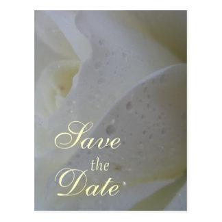 Cartão Postal Casamento branco da pétala cor-de-rosa