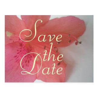 Cartão Postal Casamento cor-de-rosa tropical
