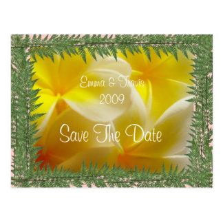 Cartão Postal Casamento do verão
