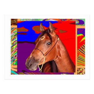 Cartão Postal CAVALO bonito alerta de Brown: Piloto do garanhão