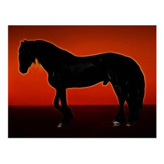 Cartão Postal Cavalo curvado