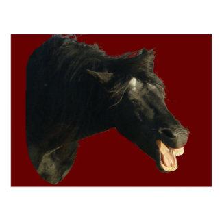 Cartão Postal Cavalo-retrato do frisão que boceja