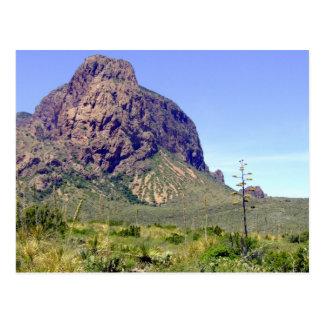 Cartão Postal Cena 01 do deserto de Chihuahuan