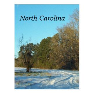 Cartão Postal Cena da neve do inverno de North Carolina